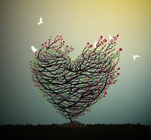 Valentine S Rose Composition,