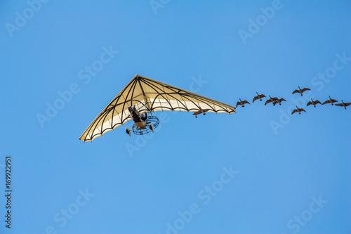 ULM en vol accompagné par un vol d'oiseaux