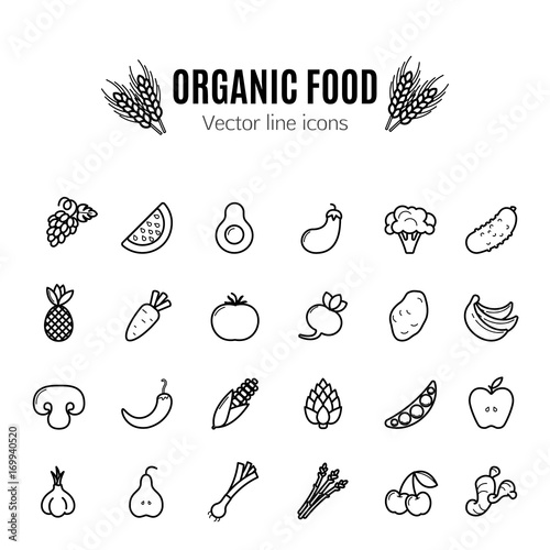 Poster Cuisine Fruit and vegetables vector thin line icon set. Vegan natural bio pictograms. Artichoke, asparagus, wheat, bananas, grapes, leeks, garlic, ginger and others organic food signs.