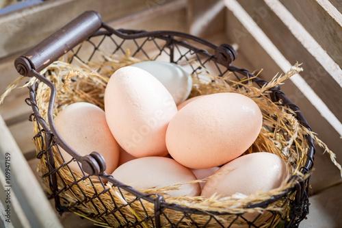 Plakat Dobre i ekologiczne jajka z piórami kurzymi