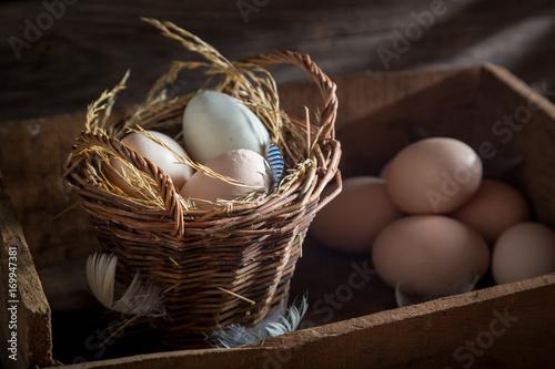 Plakat Świeże i ekologiczne jajka w koszyku