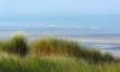dunes de sable de la côte picarde