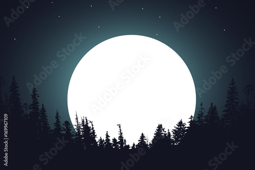 forest-night-moon