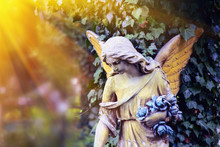 Majestic View Of Statue Of Golden Angel Illuminated By Sunlight Against A Background Of Dark Foliage. Dramatic Unusual Scene.