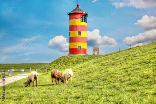 Sheep in front of the Pilsum lighthouse on the North Sea coast of Germany.