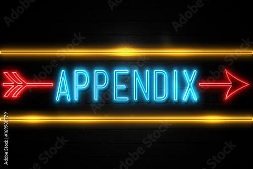Appendix  - fluorescent Neon Sign on brickwall Front view Wallpaper Mural