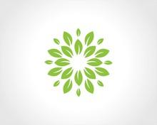 Green Flower Abstract Logo