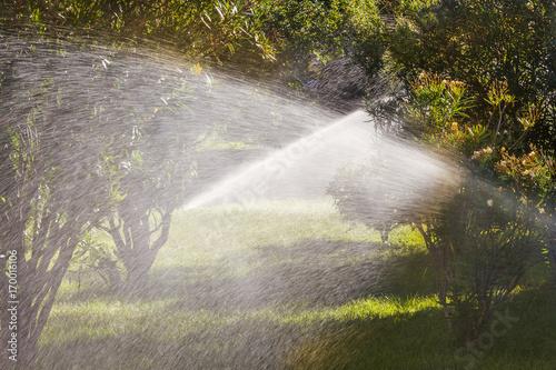 Aluminium Prints Forest river Sprinklers in the garden