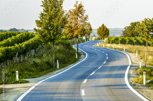 Fotografie, Obraz  Landstrasse mit Kurve, Linienführung, Doppel-S-Kurve, Österrei