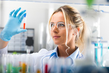 Young Attractive Female Scientist Examiming Test Tube With Substance Probe