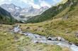 Gebirgsfluß vom Gletscher in einer Herbstlandschaft