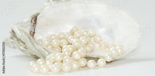 Muschel mit Perlenkette