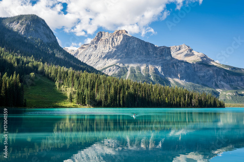 Photo sur Aluminium Bleu vert Emerald Lake in Yoho National Park