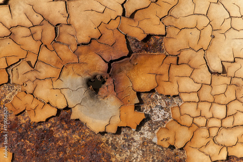 Tuinposter Hout Weathered once painted metal surface with lot of rust