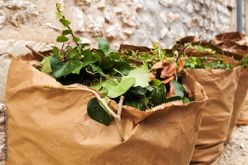 Fotomural sac en papier recyclé pour déchets verts