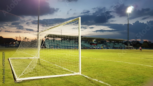 Fotografia, Obraz  Football goal with the white mesh on a green lawn in the evening