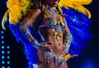 Beautiful bright colorful carnival costume illuminated stage background. Samba dancer hips carnival costume bikini feathers rhinestones close up.