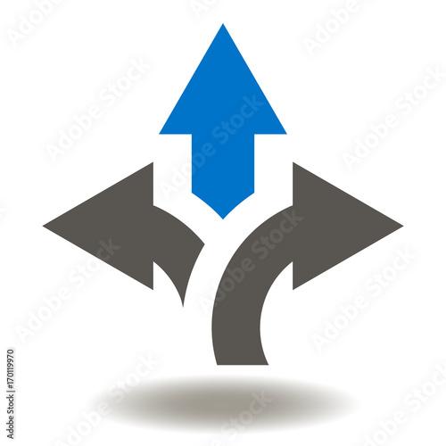 Fotografie, Obraz  Arrows Icon Vector