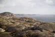 Glatte Felsen, raue Küste
