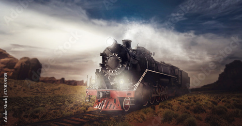 Old steam train, travel in valley Canvas Print
