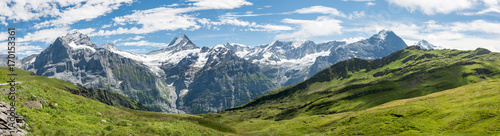 Bermese Alps near Grindelwald in Switzerland Canvas Print
