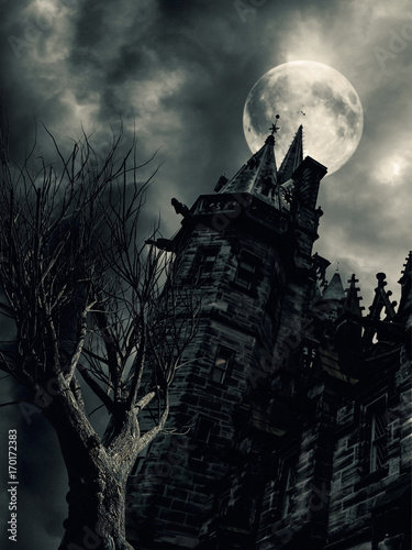 Photo  haunted house in creepy dark night with moon.