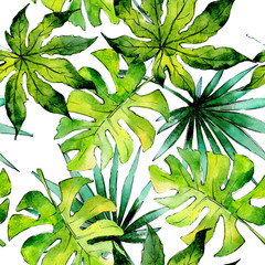 FototapetaTropical Hawaii leaves plants pattern  in a watercolor style. Aquarelle wild flower for background, texture, wrapper pattern, frame or border.