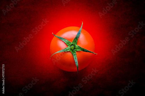Fototapeta One tomato obraz