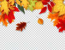 Abstract Vector Illustration With Falling Autumn Leaves On Transparent Background