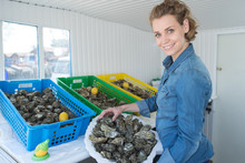 Female Oyster Worker At Oyster...