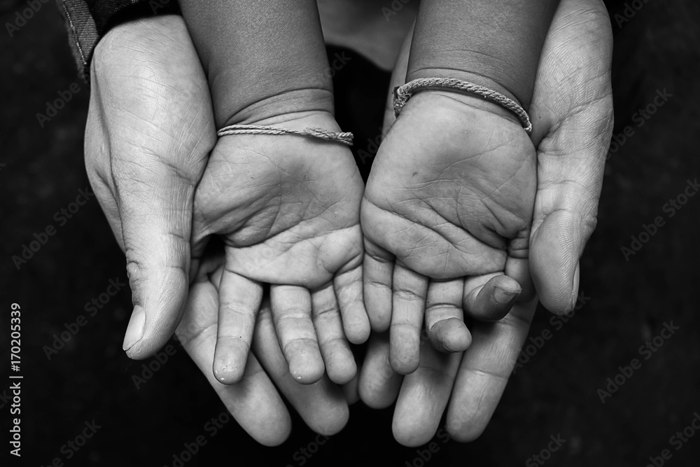 Fototapeta The children's hands are scarce close up.