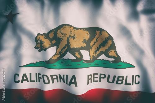 Fotografie, Obraz  California State flag