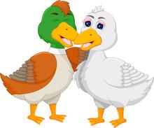 Sweet Duck Cartoon Hug And Happiness