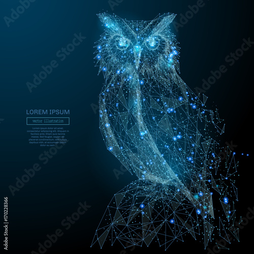 Poster Owls cartoon Owl isolated from low poly wireframe on dark background. Wild bird of prey. Vector polygonal image in the form of a starry sky or space, consisting of points, lines, and shapes in the form of stars