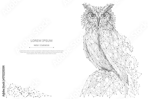 Keuken foto achterwand Uilen cartoon Owl isolated from low poly wireframe on white background. Wild bird of prey. Vector abstract polygonal image mash line and point hands collect puzzle with an inscription. Digital graphics
