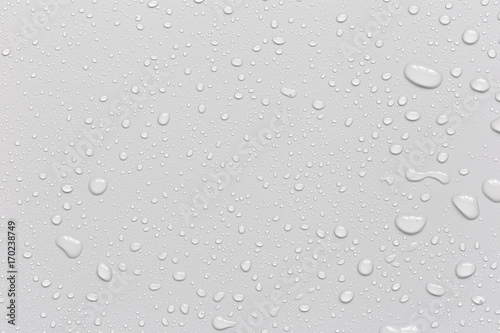 Obraz Water droplets on a gray background - fototapety do salonu