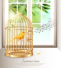 Singing Canary In Summer Time ...