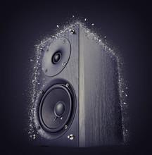Black Audio Speaker Shattered,...