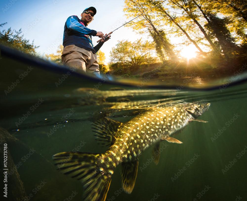 Fototapeta Fishing. Fisherman and pike, underwater view