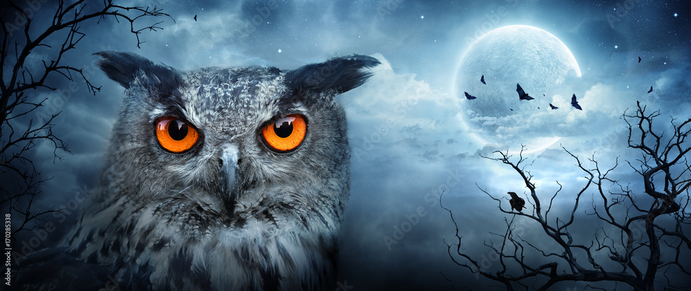 Angry Eagle Owl At Moonlight In The Spooky Forest - Halloween Scene