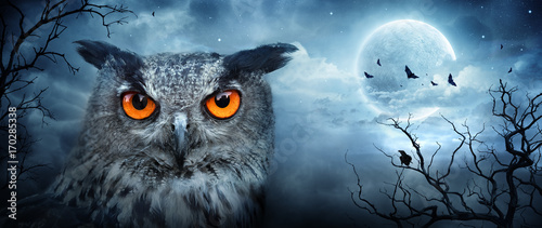 Staande foto Uil Angry Eagle Owl At Moonlight In The Spooky Forest - Halloween Scene