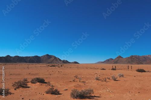 Foto op Aluminium Oranje eclat Namibia desert, Veld, Namib