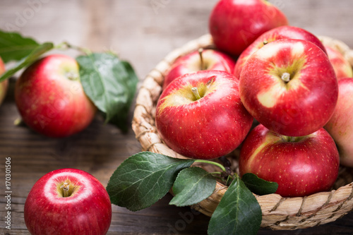 Fresh red apples in the basket
