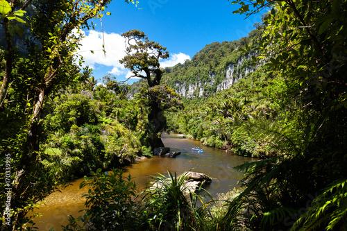 Foto op Aluminium Oceanië Kayak in Paparoa National Park and Pororari River