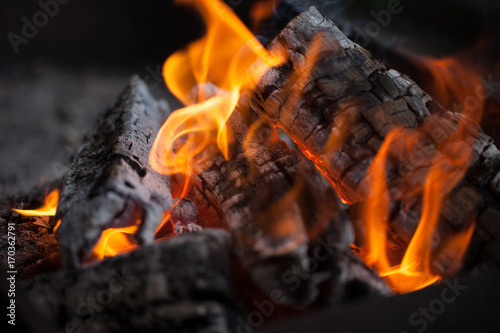 Bonfire. Fire wood. Grilling and cooking fire. Woodfire with flames.