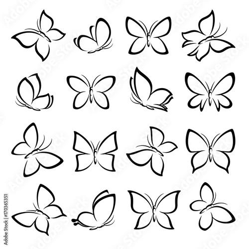 Fotografie, Obraz  Butterflies set. Vector