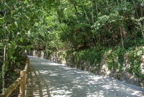 Tuinposter Weg in bos Coimbra, Portugal