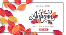 Autumn Sale Background Layout ...