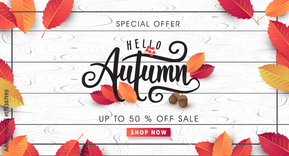 Fototapety, obrazy: Autumn sale background layout decorate with leaves for shopping sale or promo poster and frame leaflet or web banner.Vector illustration template.