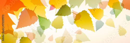 Valokuvatapetti Vector banner dead leaves, autumn background